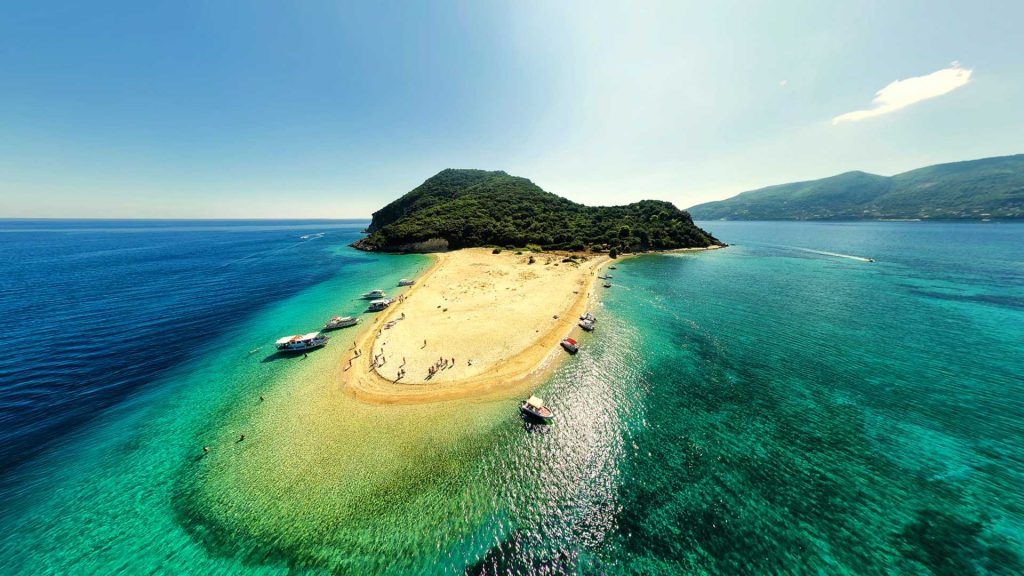 Caretta-Caretta Turtles – Jimmy's Experience Tours & Cruises